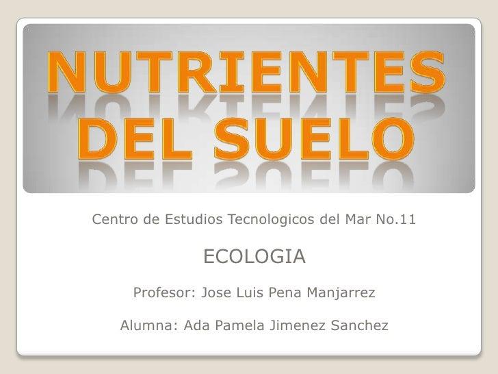 Centro de Estudios Tecnologicos del Mar No.11               ECOLOGIA     Profesor: Jose Luis Pena Manjarrez   Alumna: Ada ...