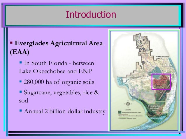 Nutrient Management in Everglades Agricultural Area (EAA) Canals Slide 2