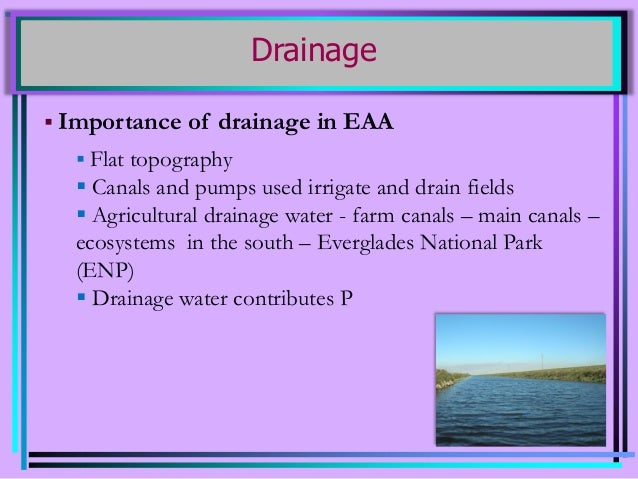 Nutrient Management in Everglades Agricultural Area (EAA) Canals Slide 3