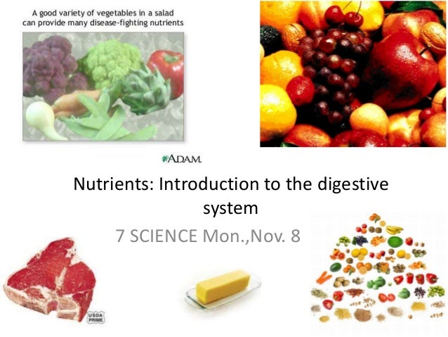 Nutrients: Introduction to the digestive system 7 SCIENCE Mon.,Nov. 8