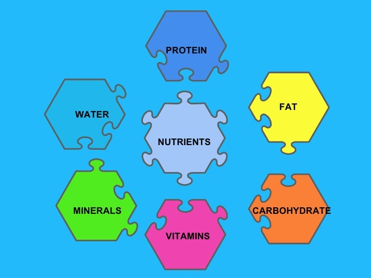 Nutrients junior cert protein water carbohydrate fat minerals vitamins nutrients ccuart Image collections