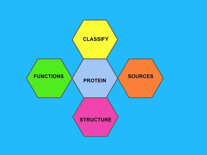 Nutrients junior cert sources classify functions structure protein ccuart Image collections