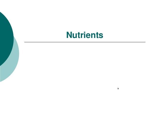 Nutrients            '