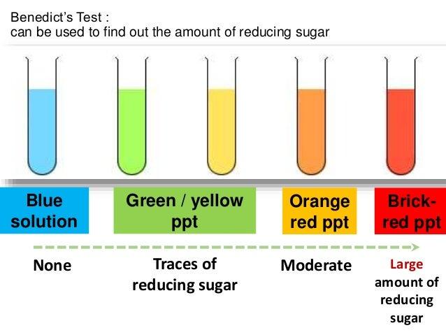 benedicts reagent test monosaccharides test reducing sugars