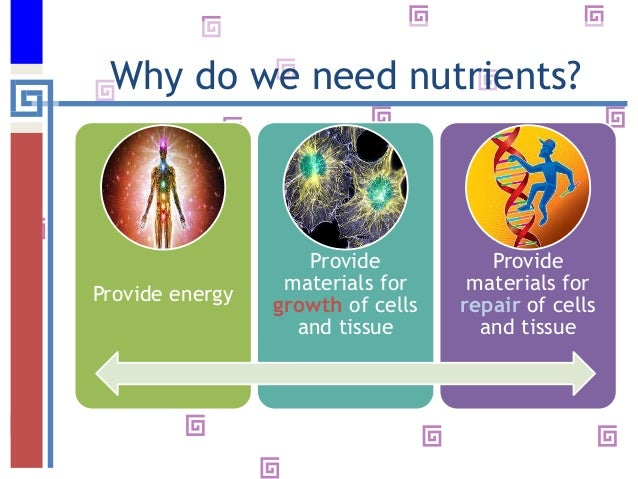 the nutrients in the food we eat Explore 11 need to know facts about american eating habits and compare eating americans consume 31% more packaged food than fresh food healthiness of the food we eat decreases by 17% for every hour that consumer attitudes toward food safety, nutrition and health food insight.