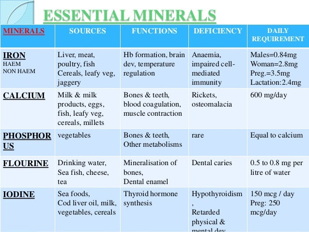 essay importance of water madrat co essay importance of water