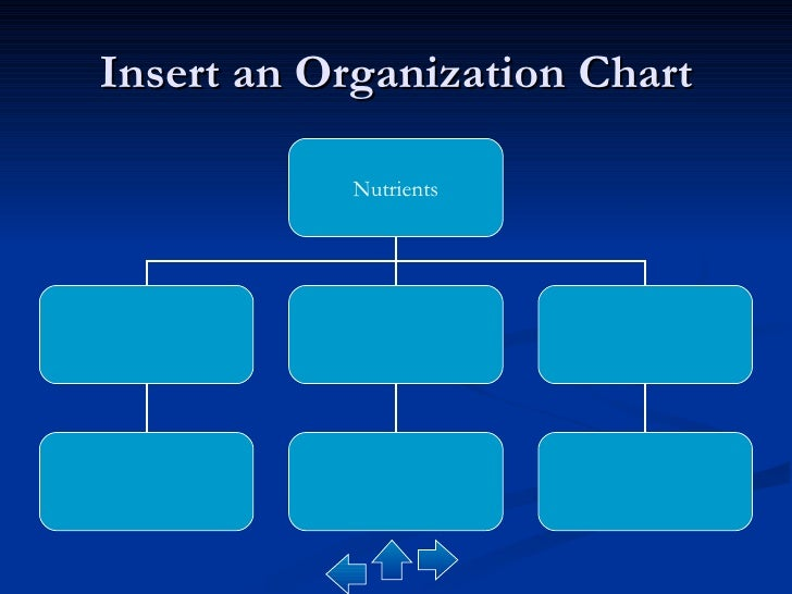 Blank Organizational Chart. Hand Drawing Blank Organization Chart