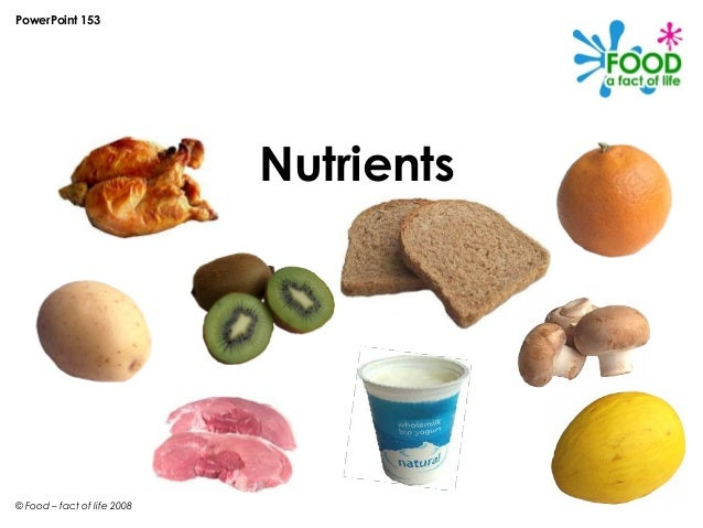 PowerPoint 153                             Nutrients© Food – fact of life 2008