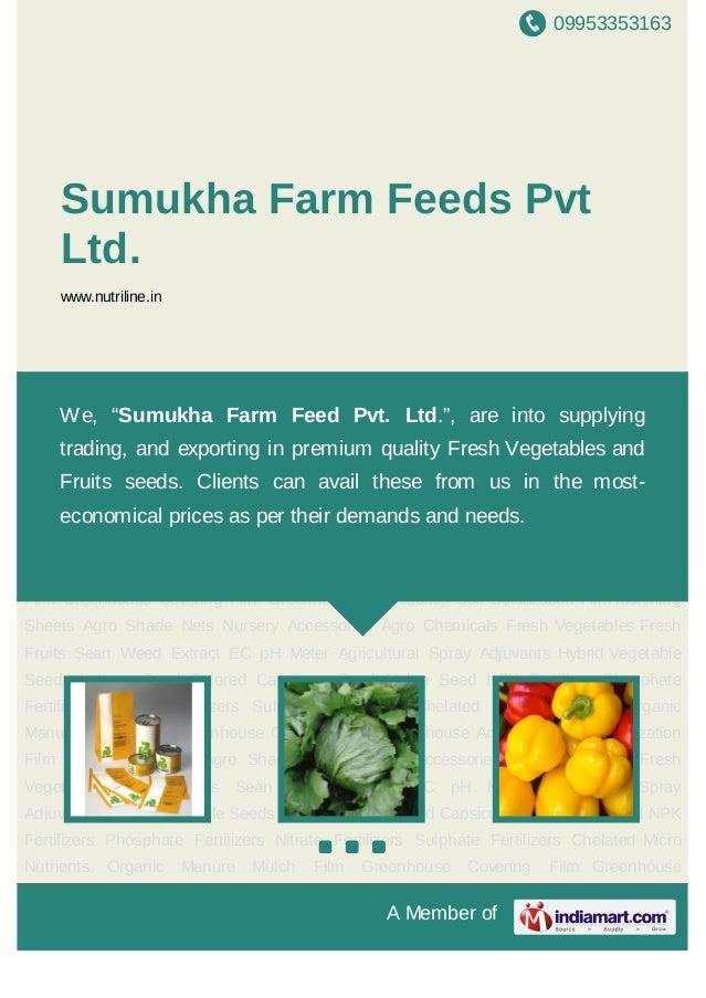 09953353163A Member ofSumukha Farm Feeds PvtLtd.www.nutriline.inHybrid Vegetable Seeds Lettuce Seed Colored Capsicum Seed ...