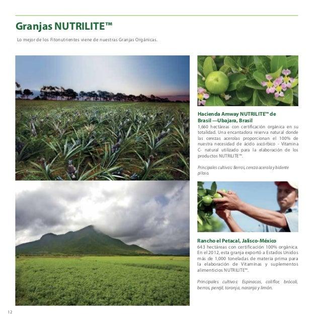 Rancho el Petacal, Jalisco-México 643 hectáreas con certificación 100% orgánica. En el 2012, esta granja exportó a Estados...