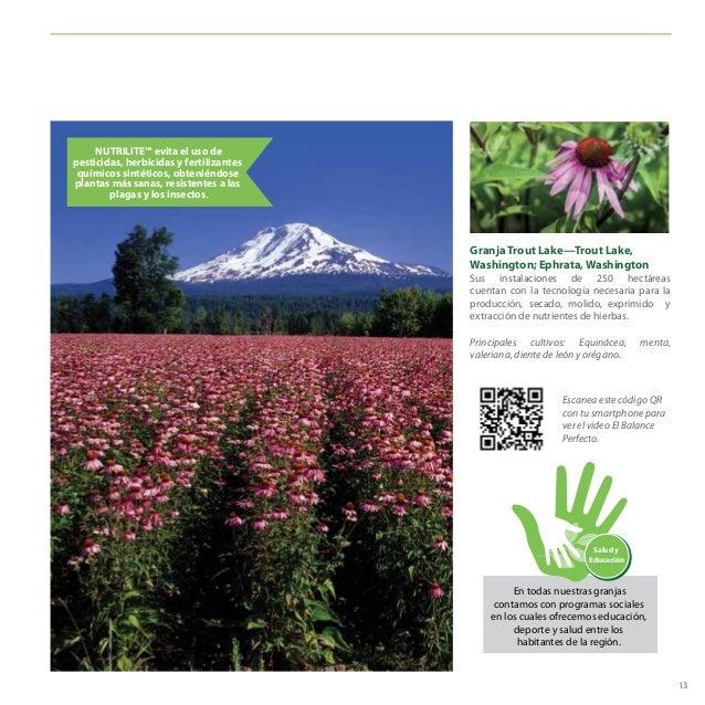Granja Trout Lake—Trout Lake, Washington; Ephrata, Washington Sus instalaciones de 250 hectáreas cuentan con la tecnología...