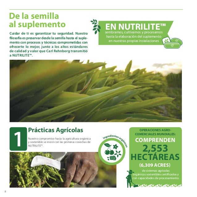 8 De la semilla al suplemento EN NUTRILITE™sembramos, cultivamos y procesamos hasta la elaboración del suplemento en nuest...