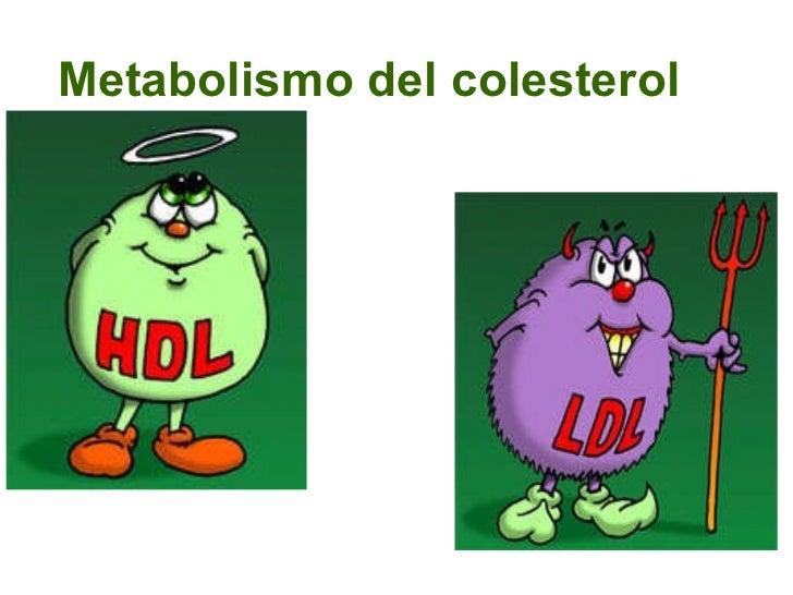 Metabolismo del colesterol Dra. Lina María González Duque. MD. MSc