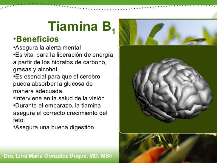 <ul><li>Beneficios </li></ul><ul><li>Asegura la alerta mental </li></ul><ul><li>Es vital para la liberación de energía a p...
