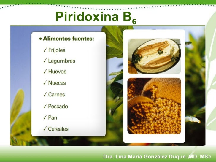 Piridoxina B 6 Dra. Lina María González Duque. MD. MSc