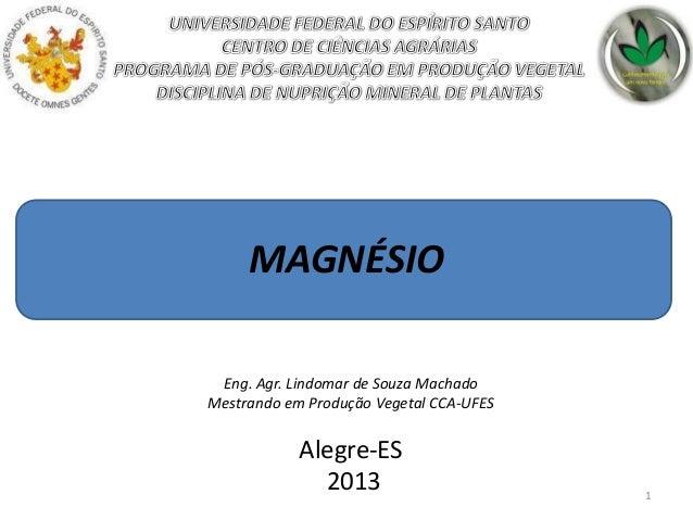 MAGNÉSIO Eng. Agr. Lindomar de Souza Machado Mestrando em Produção Vegetal CCA-UFES  Alegre-ES 2013  1