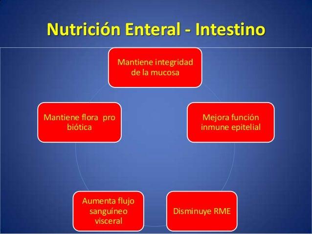 Contraindicaciones Absolutas • Inestabilidad Hemodinámica • Perforación intestinal • Íleo adinámico • Obstrucción intestin...