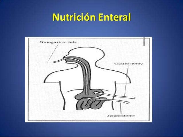 Nutrición Enteral ADMINISTRACIÓN DE NUTRIENTES A TRAVEZ DE SONDAS U OSTOMIAS CUANDO LA VIA ORAL ES INSUFICIENTE