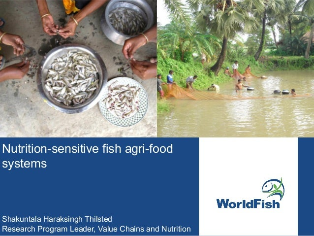 Nutrition-sensitive fish agri-food systems Shakuntala Haraksingh Thilsted Research Program Leader, Value Chains and Nutrit...