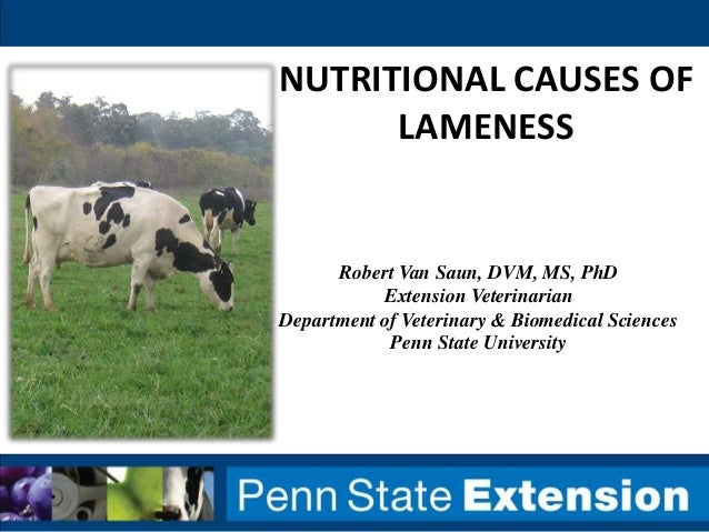 NUTRITIONAL CAUSES OF LAMENESS Robert Van Saun, DVM, MS, PhD Extension Veterinarian Department of Veterinary & Biomedical ...