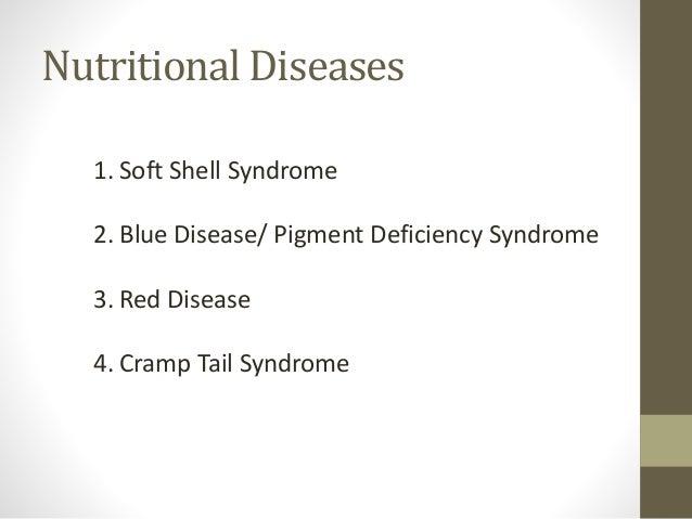 Nutritional diseases in shrimps
