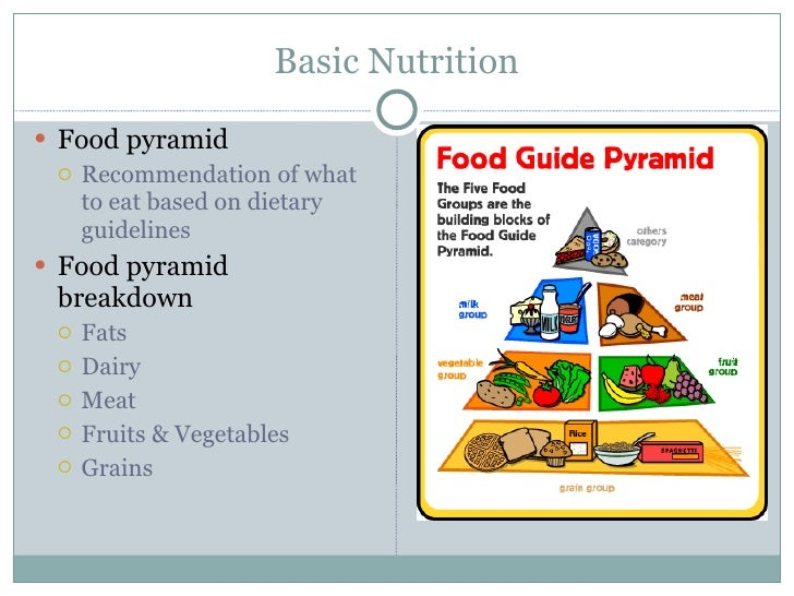 Basics Of Nutrition Powerpoint Presentation – skywrite.me