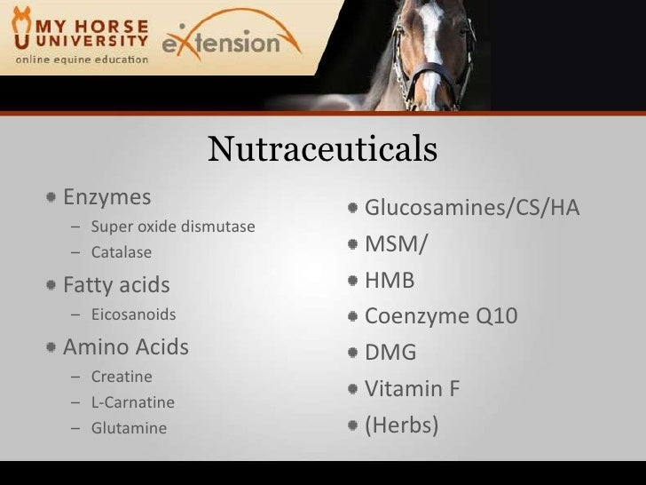 Nutritional Supplements For Horses Williams