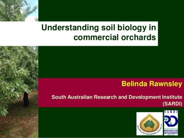 Understanding soil biology in       commercial orchards                             Belinda Rawnsley  South Australian Res...