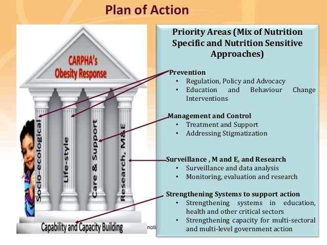 Preventing disease, promoting and protecting health Plan of Action Priority Areas (Mix of Nutrition Specific and Nutrition...