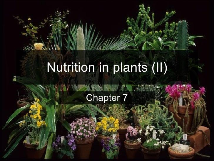 Nutrition in plants (II) Chapter 7