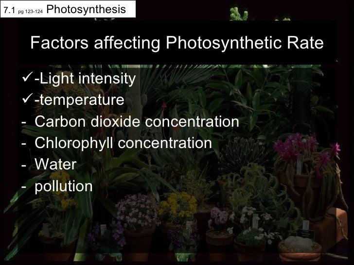 Factors affecting Photosynthetic Rate <ul><li>-Light intensity </li></ul><ul><li>-temperature </li></ul><ul><li>Carbon dio...
