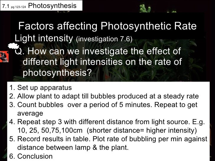 Factors affecting Photosynthetic Rate <ul><li>Light intensity  (investigation 7.6)   </li></ul><ul><li>Q. How can we inves...