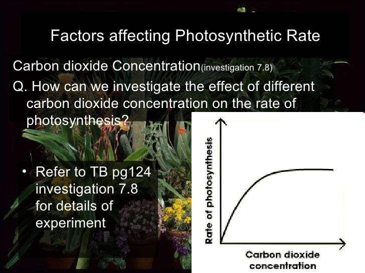 Carbon dioxide Concentration (investigation 7.8)   Q. How can we investigate the effect of different carbon dioxide concen...