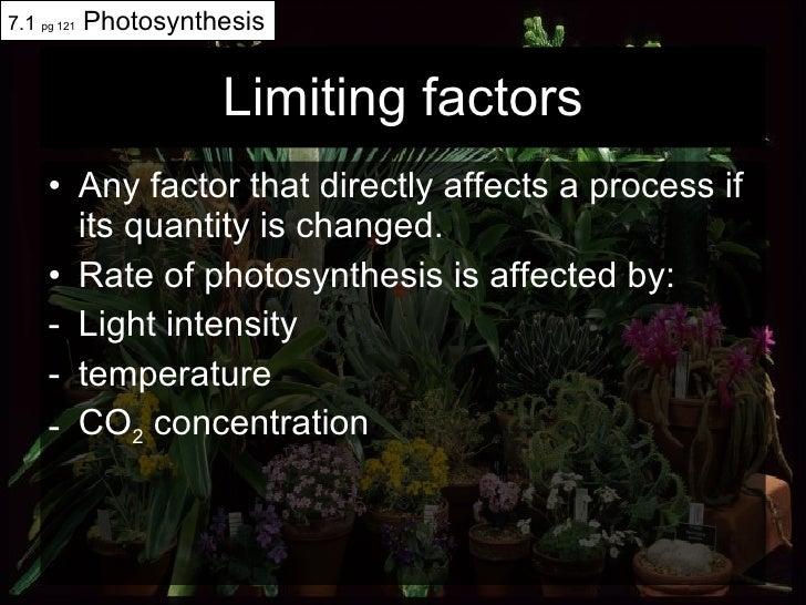 Limiting factors <ul><li>Any factor that directly affects a process if its quantity is changed.  </li></ul><ul><li>Rate of...