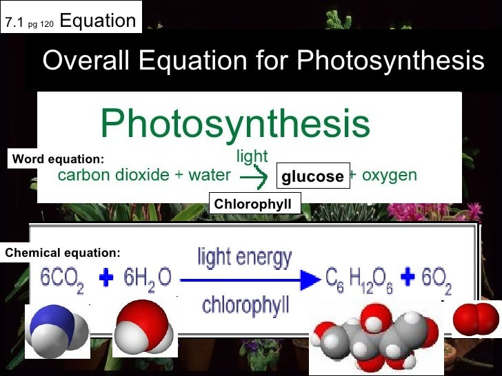 Overall Equation for Photosynthesis 7.1  pg 120  Equation glucose Chlorophyll Word equation: Chemical equation: