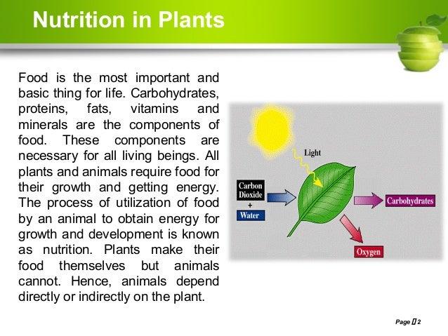 Nutrition in plants, Class- VII, NCERT Based Slide 2