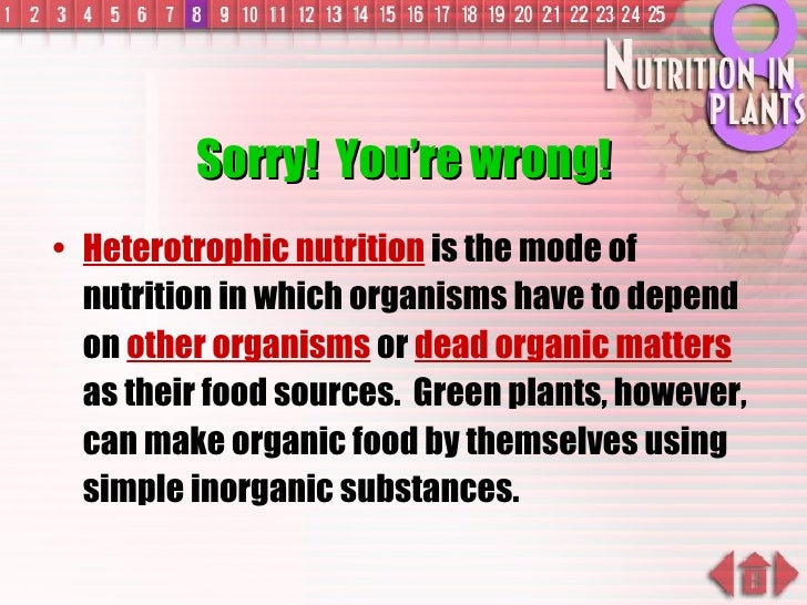 Organisms That Depend On Other Organisms For Food Are Called
