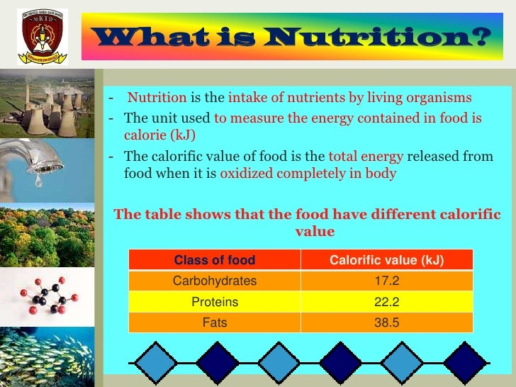 What is nutrition - 7 years younger diet pdf