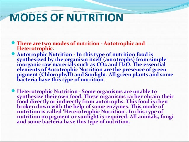 different types of heterotrophic nutrition