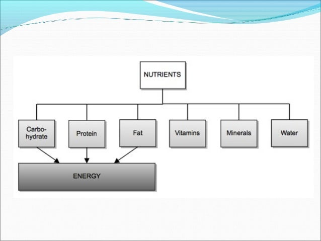Energy/ CaloriesEnergy/ Calories The Daily Recommended intake (DRI) for energy is based upon the assumption of a light to...