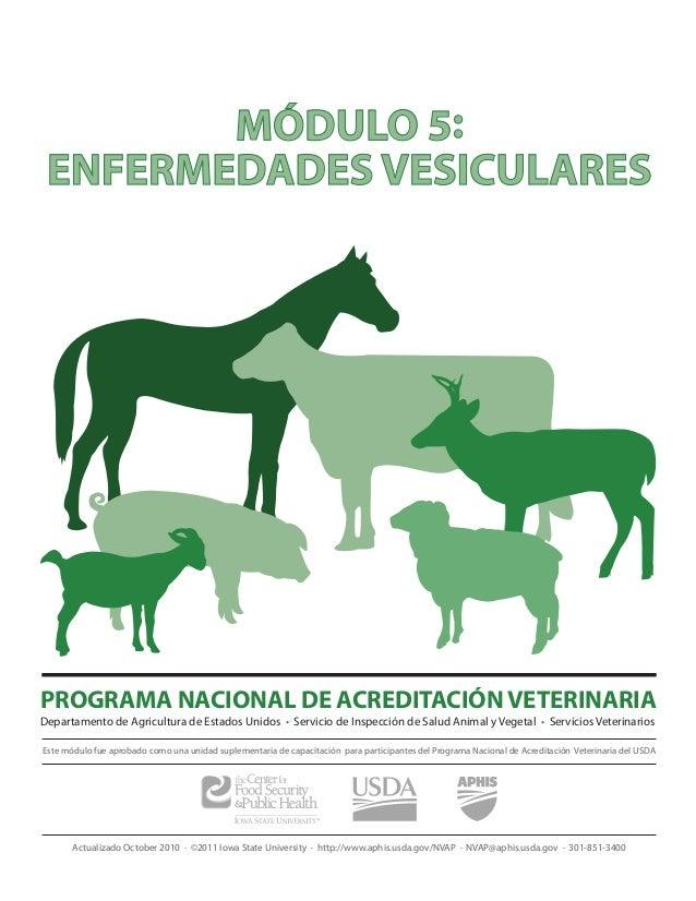 MÓDULO 5: ENFERMEDADES VESICULARESPROGRAMA NACIONAL DE ACREDITACIÓN VETERINARIADepartamento de Agricultura de Estados Unid...