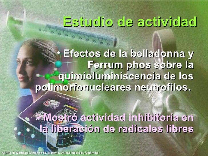 Estudio de actividad <ul><li>Efectos de la belladonna y Ferrum phos sobre la quimioluminiscencia de los polimorfonucleares...