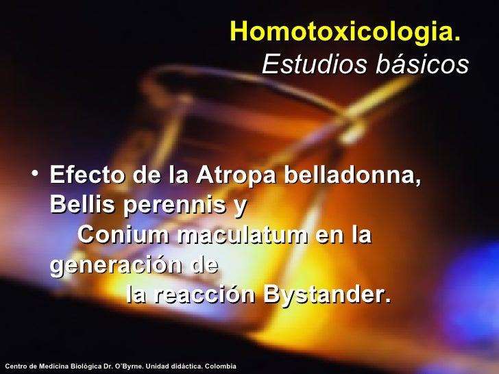 Homotoxicologia.   Estudios básicos <ul><li>Efecto de la Atropa belladonna,  Bellis perennis y  Conium maculatum en la gen...