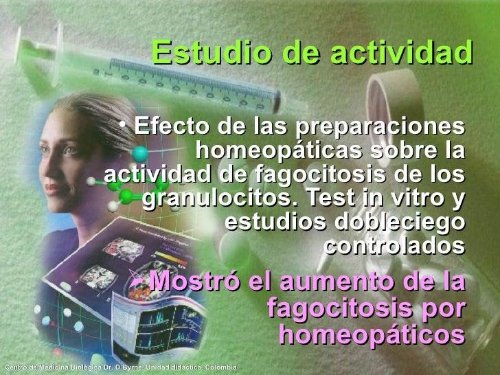 Estudio de actividad <ul><li>Efecto de las preparaciones homeopáticas sobre la actividad de fagocitosis de los granulocito...