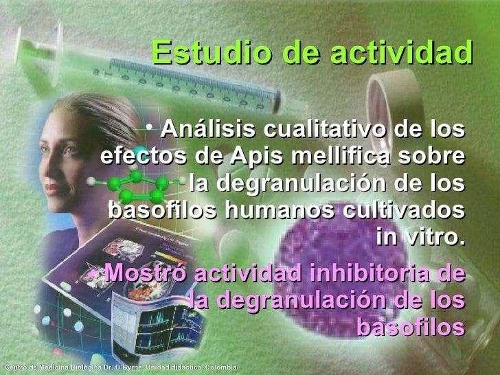 Estudio de actividad <ul><li>Análisis cualitativo de los efectos de Apis mellifica sobre la degranulación de los basofilos...