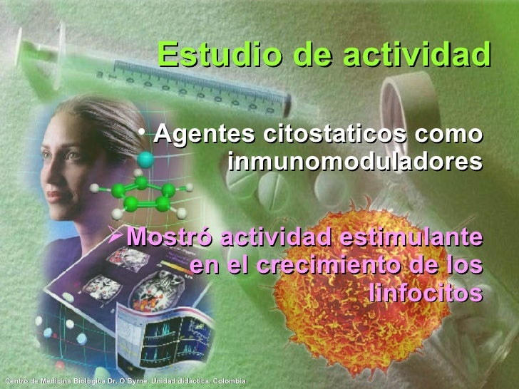 Estudio de actividad <ul><li>Agentes citostaticos como inmunomoduladores </li></ul><ul><li>Mostró actividad estimulante en...