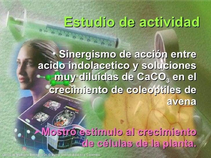Estudio de actividad <ul><li>Sinergismo de acción entre acido indolacetico y soluciones muy diluidas de CaCO 3  en el crec...