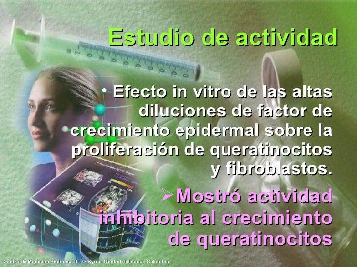 Estudio de actividad <ul><li>Efecto in vitro de las altas diluciones de factor de crecimiento epidermal sobre la prolifera...
