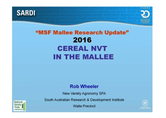 """MSF Mallee Research Update"" 2016 CEREAL NVT IN THE MALLEE Rob Wheeler New Variety Agronomy SPA South Australian Research ..."
