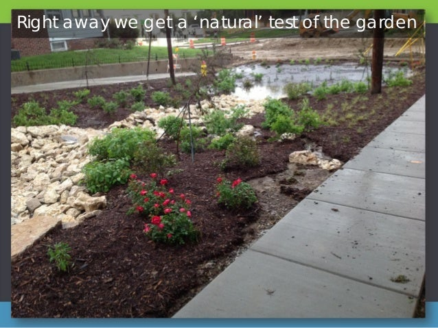Wonderful Green Infrastructure In Omaha   With Luxury Right Away We Get A Natural Test Of The Garden  With Delectable Garden Soup Also Hamster Garden Ornament In Addition Read My Secret Garden Online Free And Rose Garden Finglas As Well As Garden Weeder Tool Additionally Cheap Garden Sheds X From Slidesharenet With   Luxury Green Infrastructure In Omaha   With Delectable Right Away We Get A Natural Test Of The Garden  And Wonderful Garden Soup Also Hamster Garden Ornament In Addition Read My Secret Garden Online Free From Slidesharenet
